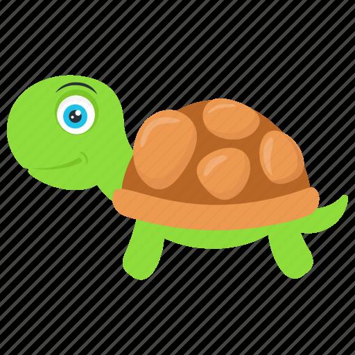 sea turtle, sea-dwelling testudines., shell animal, tortoise, turtle icon