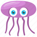 box jellyfish, jellyfish, octopus, soft bodied fish, starfish icon