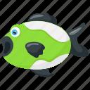 aquatic animal, fish, fish cartoon, sea animal, tropical fish icon