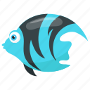 angelfish, fish, marble angelfish, sea animal, zebra angelfish icon