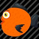 aquarium fish, freshwater fish, oranda, ryukin goldfish icon