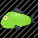 aquatic fish, green sunfish, sea animal, sunfish, tropical fish icon