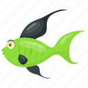 cartoon fish, aquatic animal, backdrop fish, fish, green fish