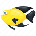 butterflyfish, chaetodontidae, fish, marine fish, tropical fish icon