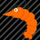 fish, mollusc, nautilus, night swimmer, sea animal icon