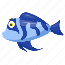 blue cichlid fish, blue dragon, electric blue hap, sea animal, tropical fish icon