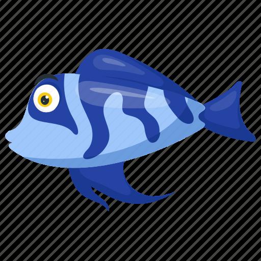 'Sea Animals' by Vectors Market