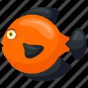 cichlids, discus, orange fish, symphysodon, symphysodon cartoon icon