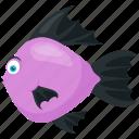 cichlids, discus, freshwater fish, symphysodon, symphysodon cartoon icon