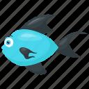 atlantic bluefin tuna, bluefin tuna, scombridae, sea animal, tuna fish icon