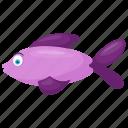 aquatic animal, fish, fish cartoon, rasbora trilineata, scissor tail fish icon