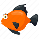 freshwater fish, platy fish, poeciliidae, sea animal, tropical fish icon