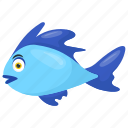 blue fish, cichlids, electric blue hap, malawi cichlids, tropical fish icon