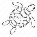 animal, line, outline, sea, thin, turtle, white icon