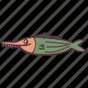 funny, fish, saw, sea, ocean