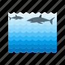 aquarium, fish, life, marine, sea, swimming, water