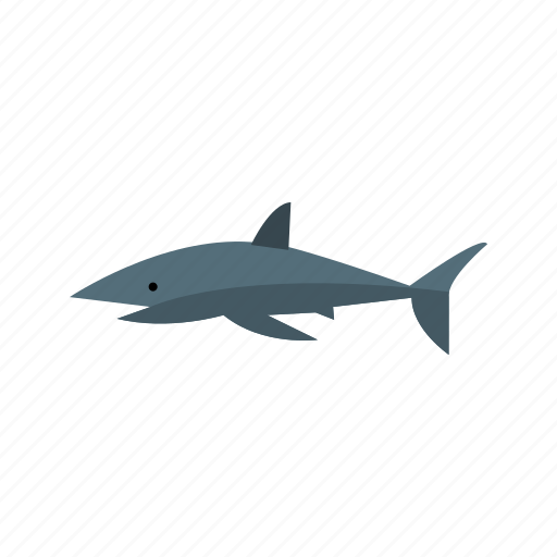 animal, fish, ocean, shark, sharks, underwater, white icon