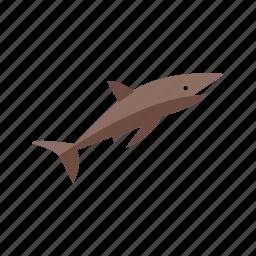 animal, fish, ocean, shark, sharks, underwater, white icon
