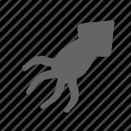 clam, mollusk, nature, ocean, sea, shellfish, squid icon
