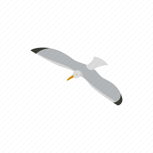 animal, bird, isometric, nature, sea, seagull, wing icon