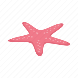 animal, isometric, ocean, sea, star, starfish, summer icon