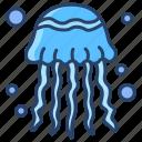 jelly, fish