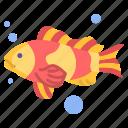 fish, 1