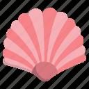 sea, shell, 2