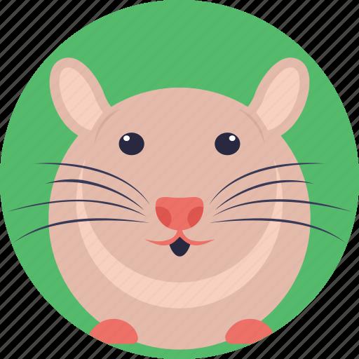 domestic mouse, fancy mouse, house mouse, mouse, pocket pet icon