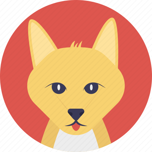 animal, carnivorous mammal, cartoon fox, dog family, fox icon