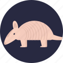 domestic mouse, fancy mouse, house mouse, mouse, pocket pet icon