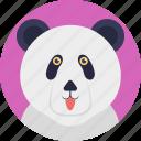 panda bear, cute animal, giant panda, panda, animal