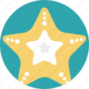 sea animals, sea creature, sea life, sea star, starfish icon