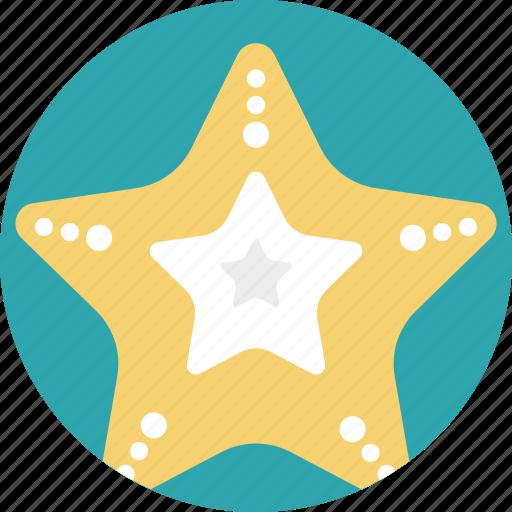 sea animals, sea creature, sea life, sea star, starfish icon