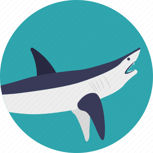 dolphin, fish, mammal, marine animal, sea life icon