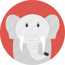 animal, cartoon animal, elephant, land animal, mammal icon