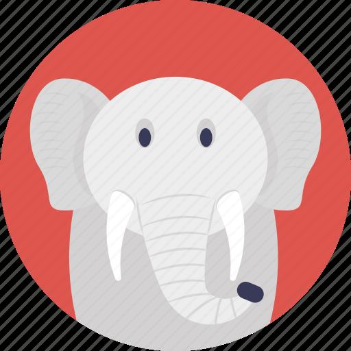 animal, cartoon animal, elephant, land animal, mammal icon