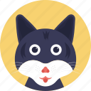 animal, cat, domestic animal, feline, wild cat icon