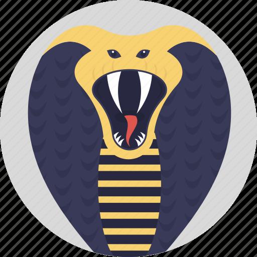 animal, cobra, hooded snake, king cobra, snake icon