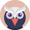 animal, bird, cartoon bird, cartoon owl, owl icon