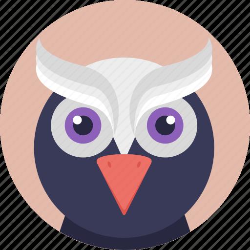 animal, bird, cartoon bird, cartoon owl, owl icon