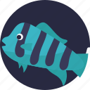 aquatic fish, fish, sealife, tropical icon