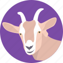 animal, capricorn, domestic goat, domesticated mammal, goat icon