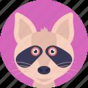 carnivorous mammal, cartoon character, cat face, domestic animal, pet icon