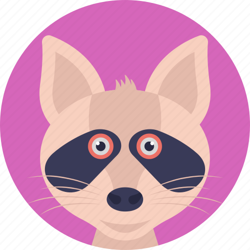 carnivorous mammal, cartoon character, cat face, domestic animal, pet icon