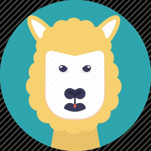 agricultural animal, animal, cartoon sheep, domesticated ruminant mammal, sheep icon