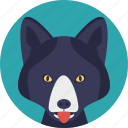 animal, carnivorous mammal, cartoon fox, dog family, fox icon