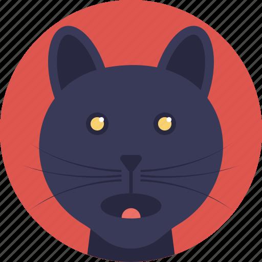 animal, black feline, cat, domestic animal, wild cat icon