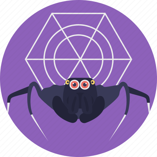 animal, cartoon spider, creature, insect, spider icon