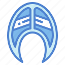 fish, food, healthy, salmon icon